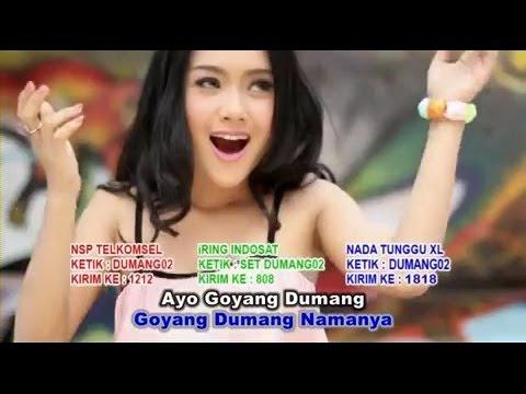 Video Cita Citata Goyang Dumang official video Clips HD download in MP3, 3GP, MP4, WEBM, AVI, FLV January 2017