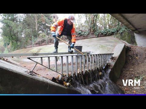 Mainz: Rohr frei - Kanalarbeiter sorgen für reibungsl ...