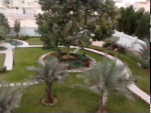 الحدائق الفائزة  قطر