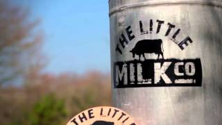 Little Milk Co. - Show Your Business