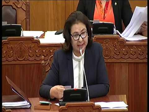 Ц.Гарамжав: Монголд үйл ажиллагаа явуулж буй гадаадын компаниас авдаг 20 хувийн татварыг яагаад 5 болгосон бэ?