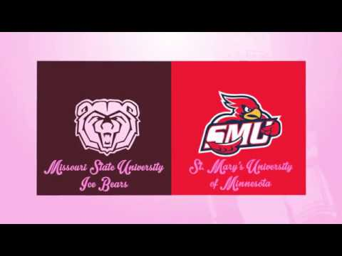 Missouri State Ice Bears Pink the Rink 2013