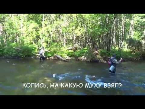 рыбалка на реке сита хабаровского края