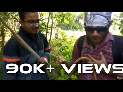 Video MAN VS WILD PART 2 (ASSAMESE VERSION) download in MP3, 3GP, MP4, WEBM, AVI, FLV January 2017
