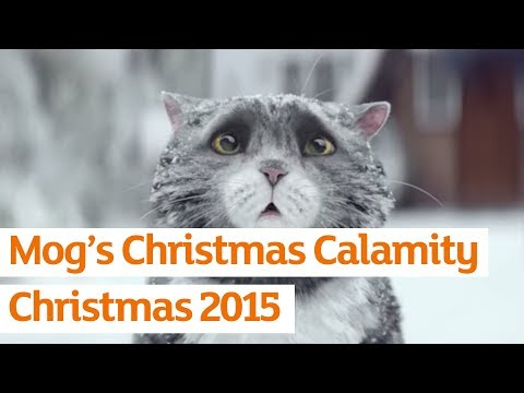 Sainsbury  s OFFICIAL Christmas Advert 2015 Mog  s Christmas