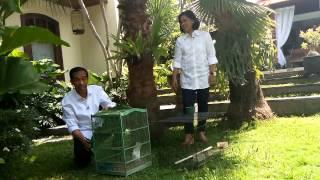 Video kehidupan Jokowi di Rumah Solo jokowijklive.com MP3, 3GP, MP4, WEBM, AVI, FLV November 2017