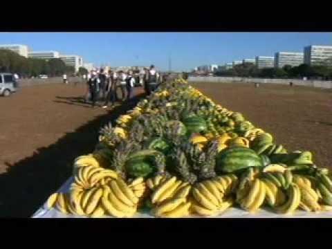 CNA quebra recorde com maior mesa de frutas e verduras do mundo