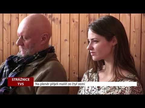 TVS: Strážnice - Na plenér přijeli malíři ze čtyř zemí