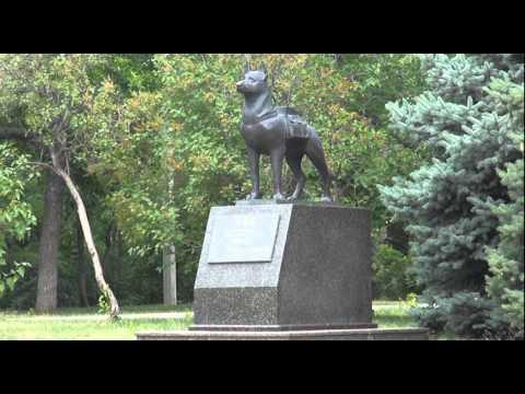 Памятник собаке-подрывнику Волгоград