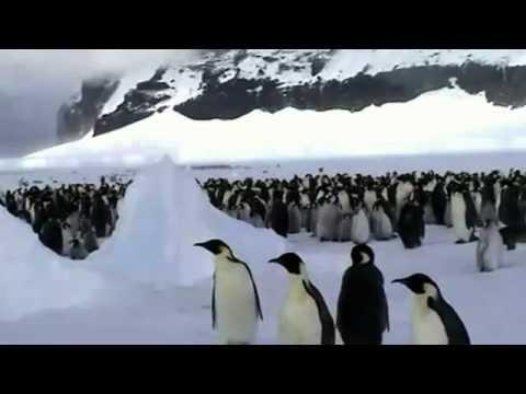 Video entrevista oficial del libro La estrategia del pingüino: Influir mediante mensajes que se contagian de persona en persona y las claves para influir en el nuevo entorno de las comunicaciones