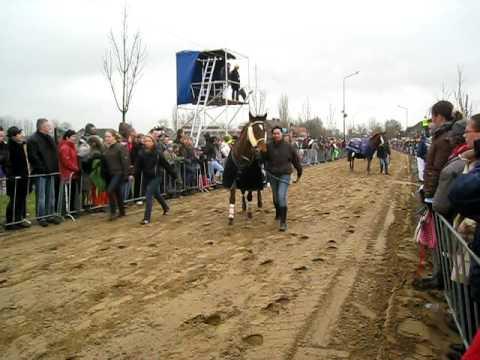 Metworst Boxmeer 2009 halve finale