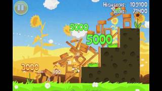Angry Birds Seasons Summer Pignic Level 3 Walkthrough 3 Star