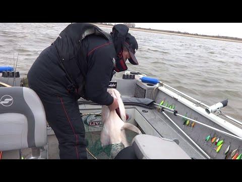 рыбалка в енотаевке астраханской области 2016