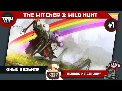 The Witcher 3: Wild Hunt - Быков, начинающий фрилансер #1