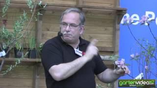 Markus redet über Redlove (Englisch)