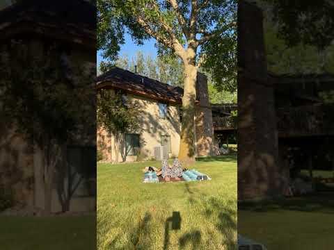 Fall Outdoor Yoga Thumbnail