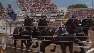 Livingston (MT) United States  city photos : 2016 Livingston, Montana, Roundup Parade & Rodeo