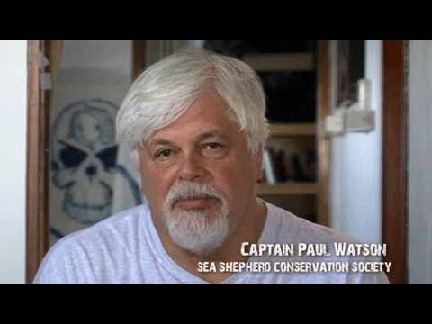 Captain Paul Watson discusses the bluefin tuna issue