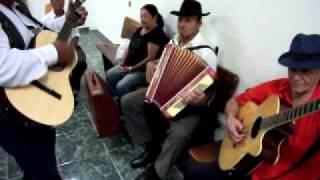 Sanfona, Viola E Violão