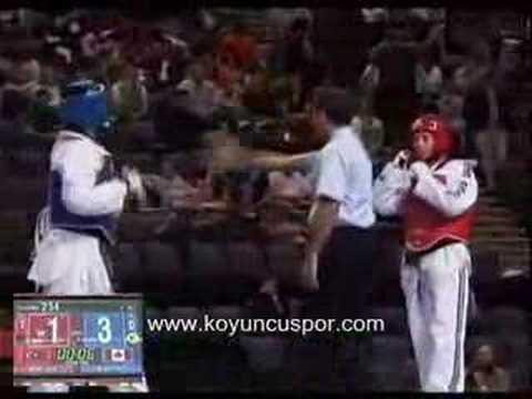 Sibel Güler And Karine Sergerie 68kg 2007 Manchester Olimpic