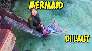Video PERTAMA KALI MERMAID BERENANG DI LAUT!!! Mermaid Pulang Kampung - Part 1 MP3, 3GP, MP4, WEBM, AVI, FLV April 2019