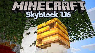 How To Spawn Bees & Farm Honey in Skyblock! • Minecraft 1.16 Skyblock (Tutorial Let's Play)[Part 15]
