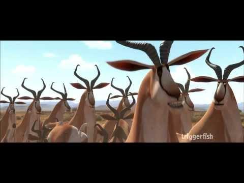 Khumba Clip 'Springboks!'