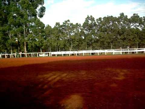 - Rodeio Fortaleza dos Valos (1) - 2010