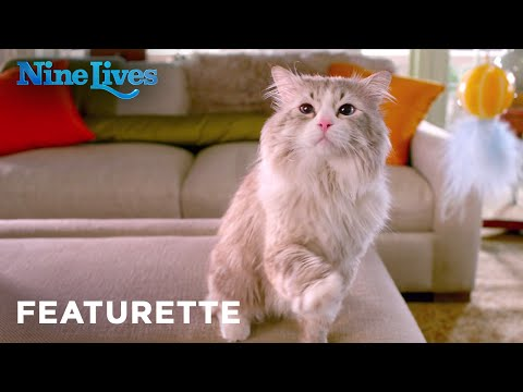 Nine Lives (2016) (Featurette 'Family Comedy')