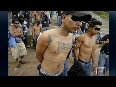 MS-13 - Root Of All Evil