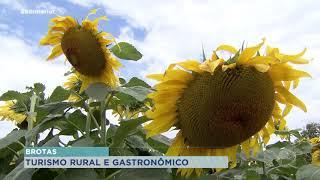 Brotas: turismo rural e gastronômico atraem visitantes