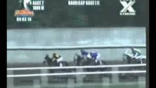 RACE 7 PANAMAO PRINCESS 04/04/2014