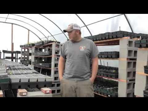 Organic Gardening Pest Control Secrets