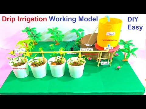 drip irrigation working model science fair project | DIY at home | howtofunda
