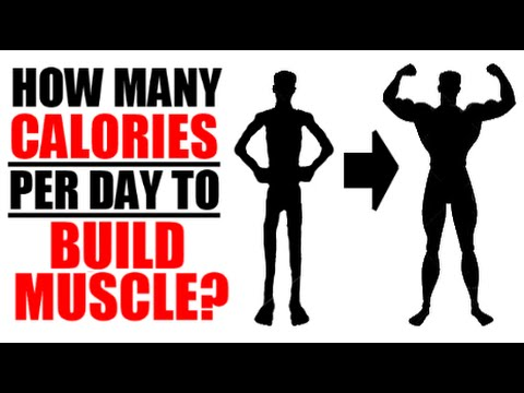 HOW MANY CALORIES PER DAY TO GAIN WEIGHT + BUILD MUSCLE? | HOW TO FIND YOUR MACROS EASILY!