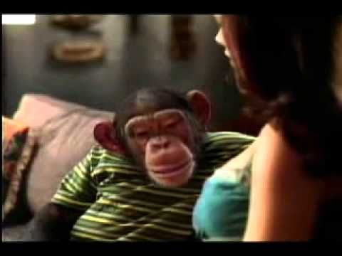 Monkey Super Bowl XXXVIII Commercial Bud Light 5 of 8