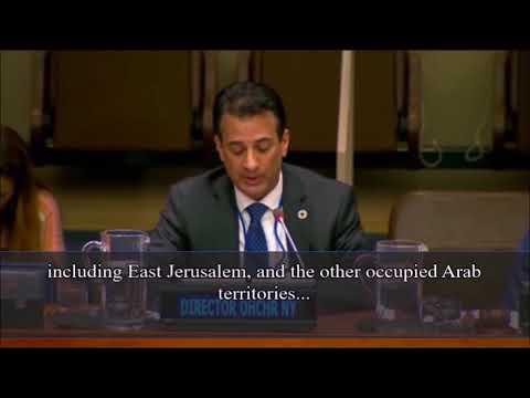 U.N. human rights director in NYC, Craig Mokhiber. U.N. Israel-bashing personified.