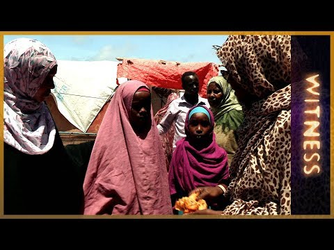 witness - Asha Hagi Elmi is a humanitarian activist, internationally recognised for her work helping to build peace and defend the rights of women in Somalia. Witness ...