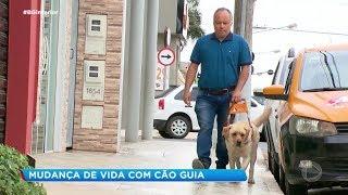 Morador de Itapetininga com deficiência visual ganha cão-guia