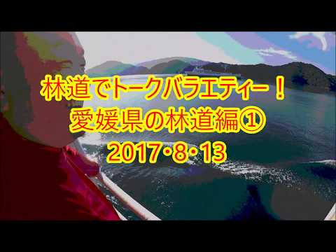 林道でトークバラエティー!愛媛県の林道編①2017・8・13(チームSEROW`s)