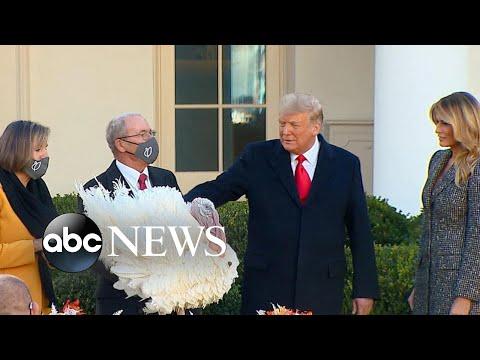 Trump pardons turkeys before Thanksgiving