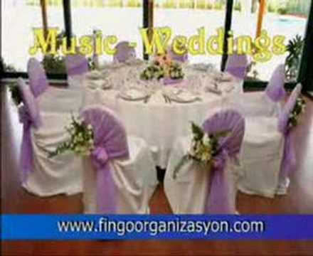 Fingo organizasyon