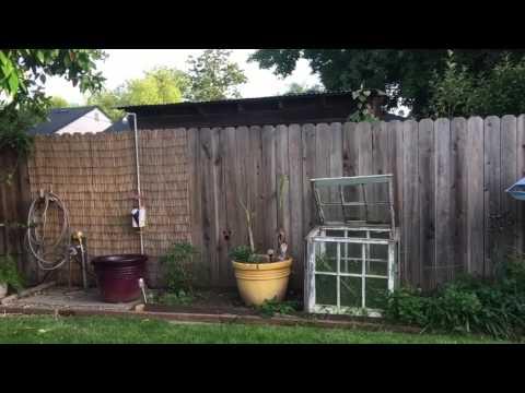 Απίστευτο! Σκύλος πίσω από φράχτη!