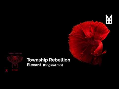 Township Rebellion - Elevant (Original Mix)