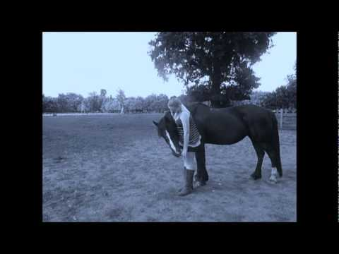 Video patience my horse xxx download in MP3, 3GP, MP4, WEBM, AVI, FLV January 2017