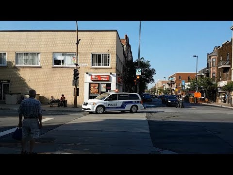 SPVM MONTREAL POLICE ARE EVERYWHERE - 4 CLIPS