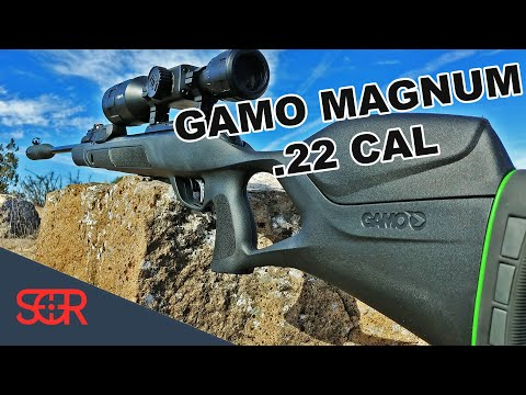 Gamo Swarm Magnum 10X GEN2 .22 CAL - FULL REVIEW - NEW Magazine AND OPEN SIGHTS!