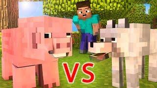 Video Wolf Life / Pig Life - Minecraft animation MP3, 3GP, MP4, WEBM, AVI, FLV September 2018
