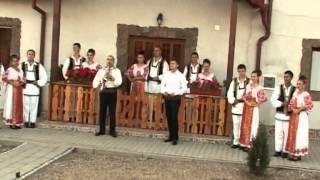 Download Lagu Puiu Codreanu - La o masă stăm la sfat Mp3