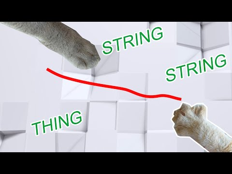 Friendly String-String Thing Game for Cats